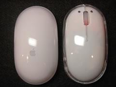 マウス比較1