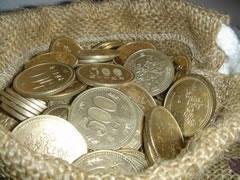 宝物感いっぱいの500円玉貯金