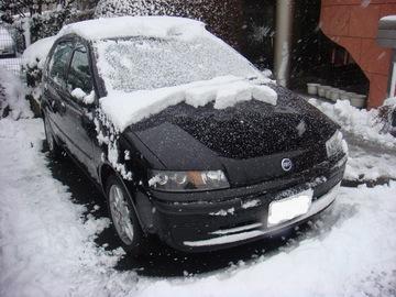 雪色プント