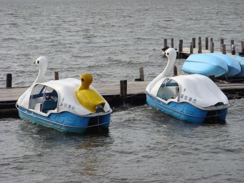 スワンボート@諏訪湖